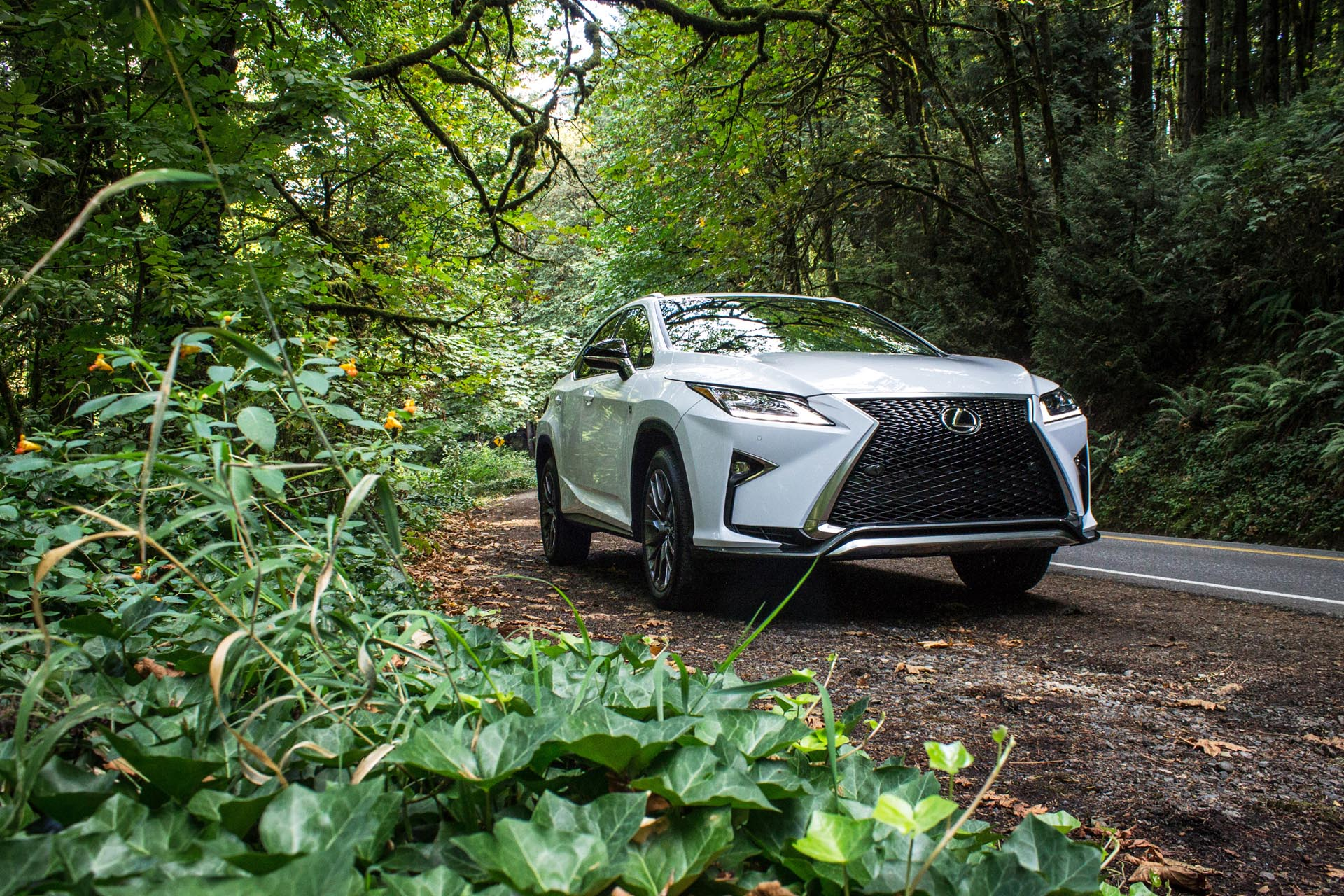 "If the previous gen was a pacifist, then the new RX is here for the attack. The entire Lexus lineup has received extensive overhauling, all based around their new ""spindle-grille"" fascia and incredibly angular accenting."