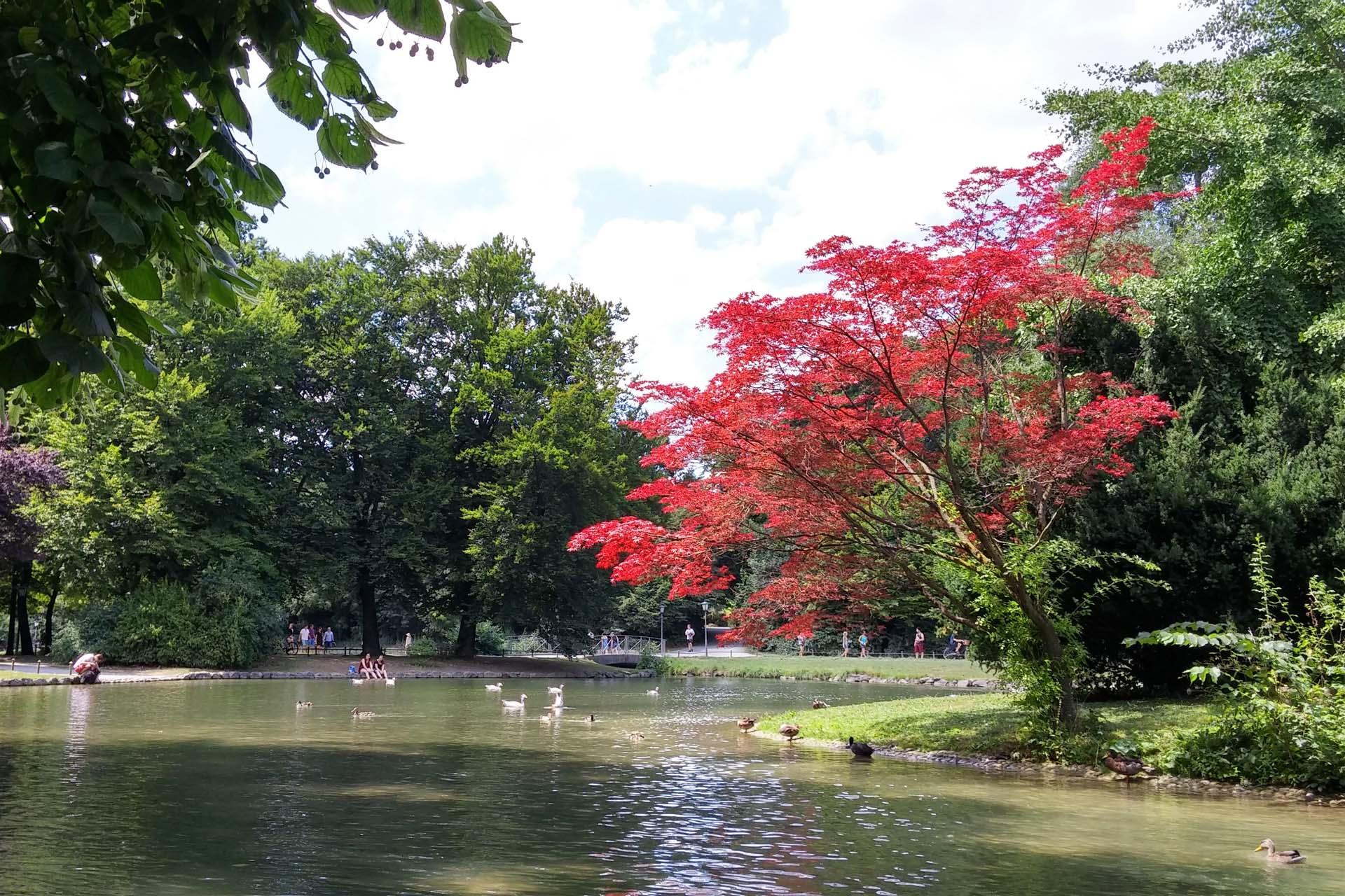 English Garden (Englischer Garten) in Munich